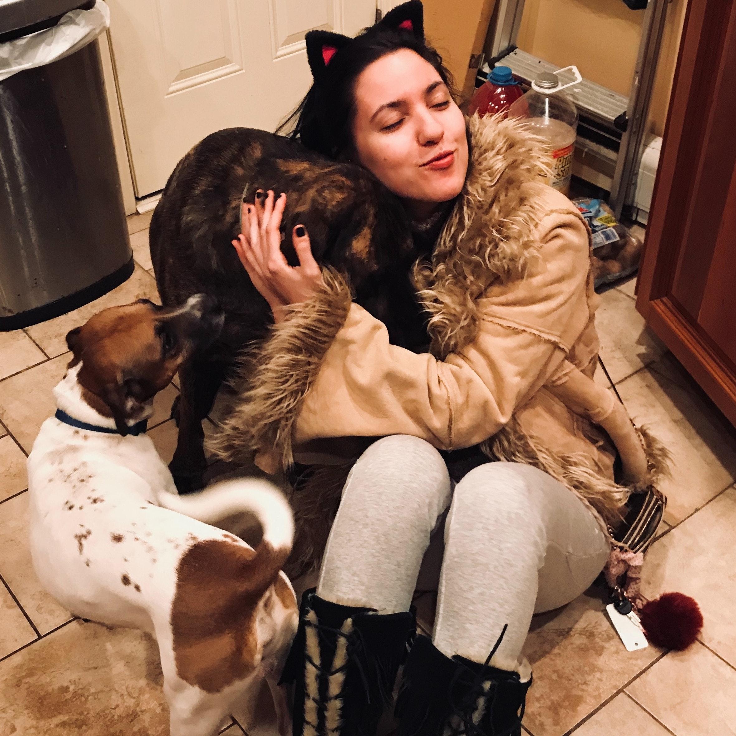 Marina's dog boarding