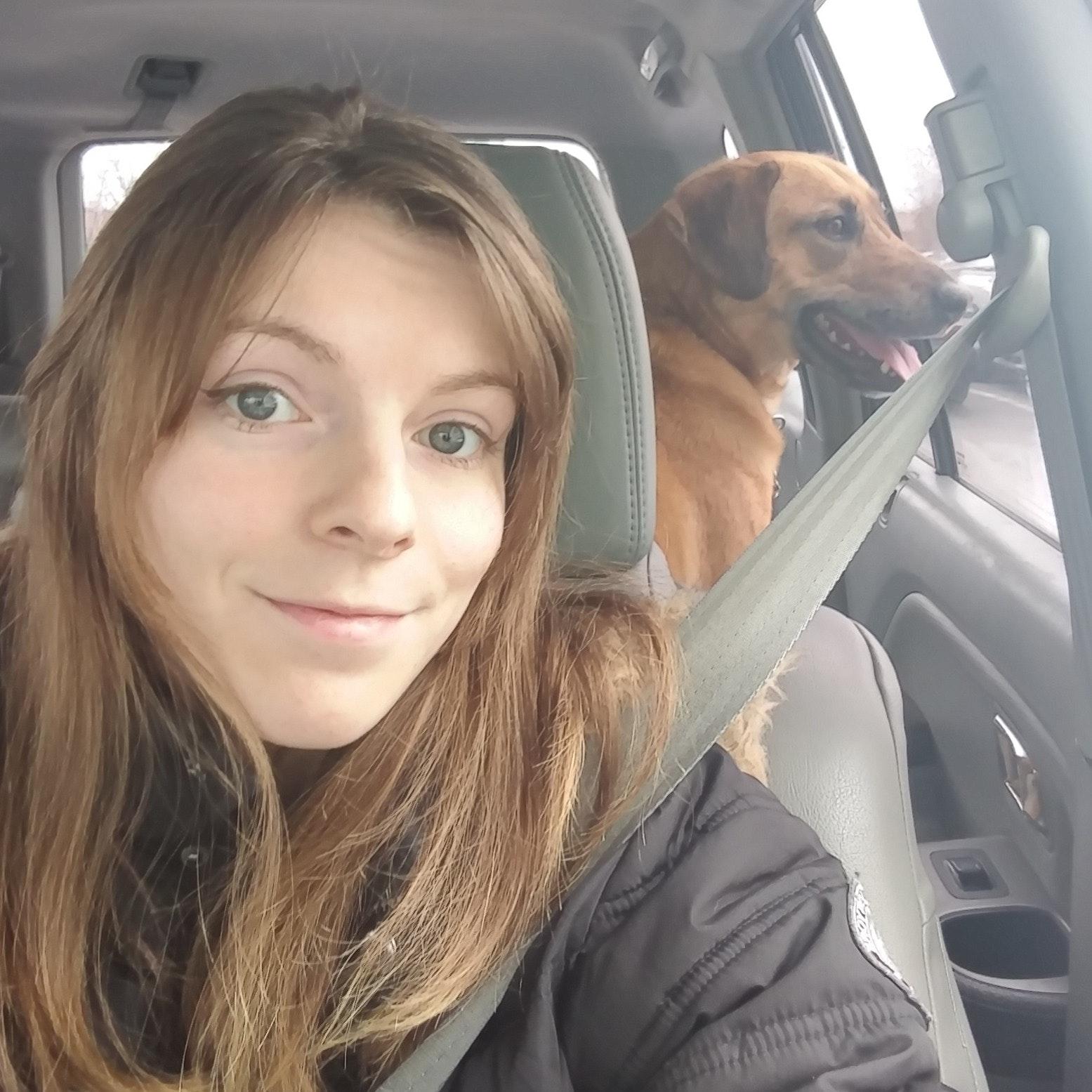 Josie's dog boarding