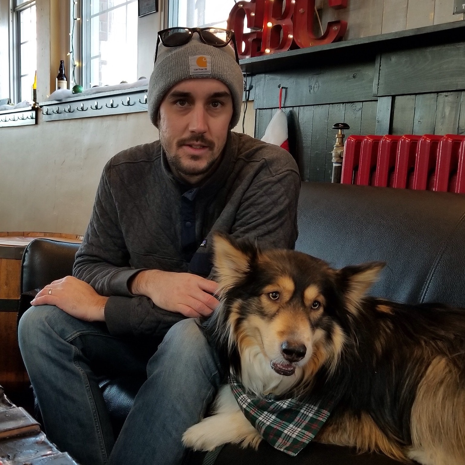 Chris's dog boarding