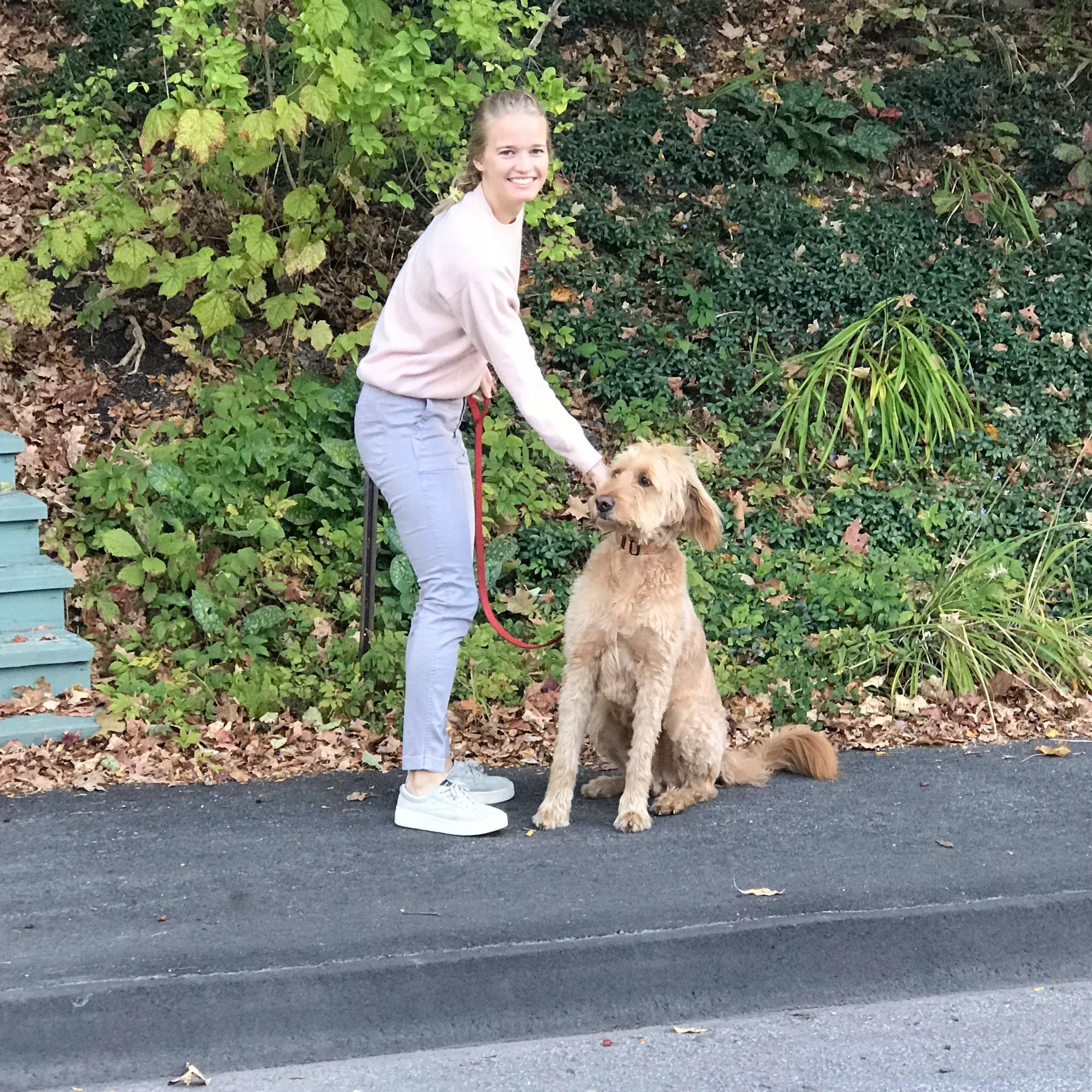 dog walker Hartley