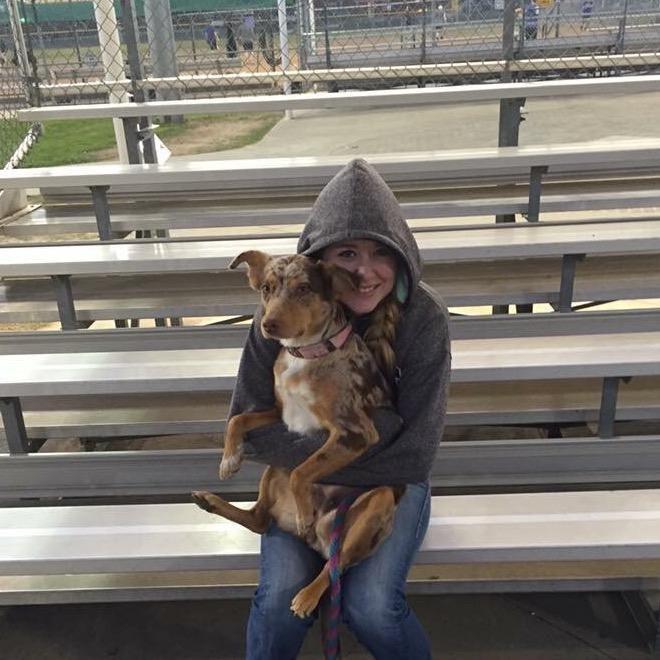 Stori's dog day care
