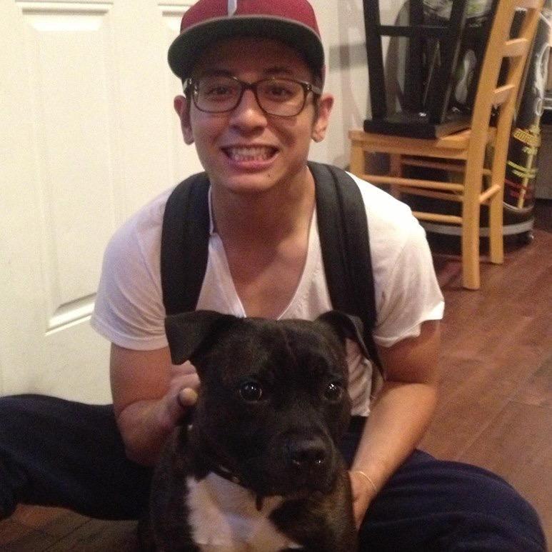 dog walker Alexander