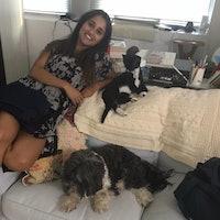 Keya's dog day care