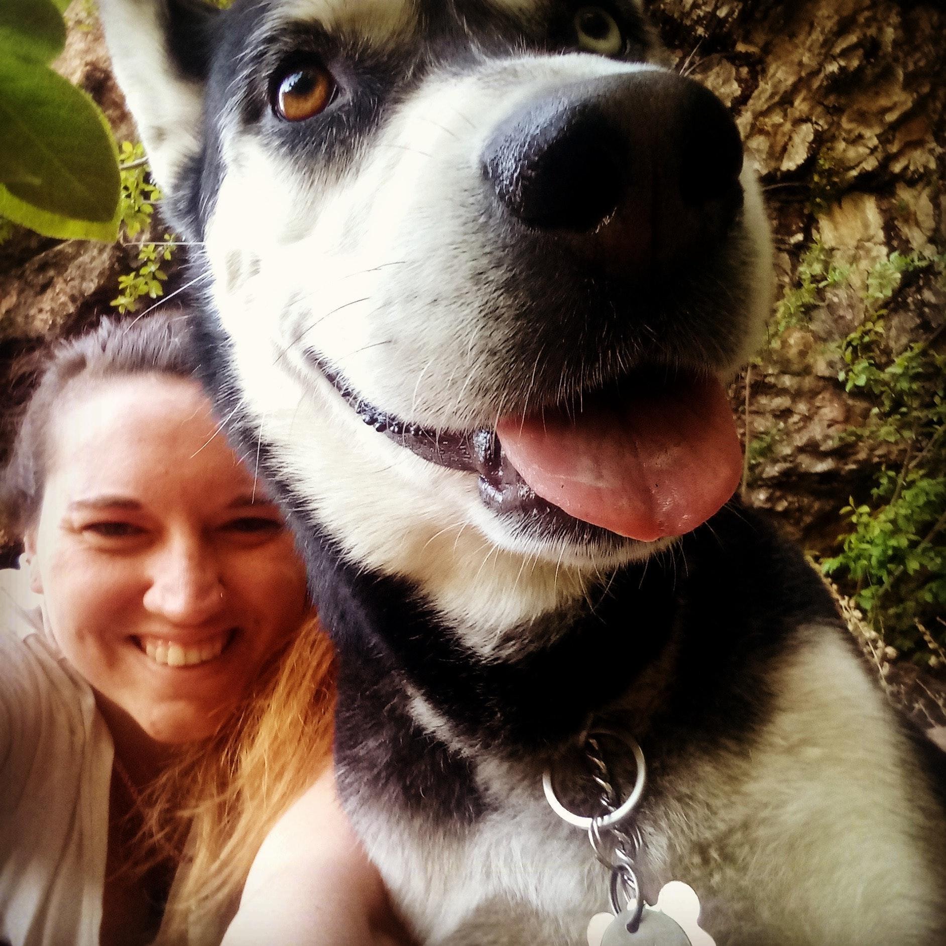Kolene's dog day care