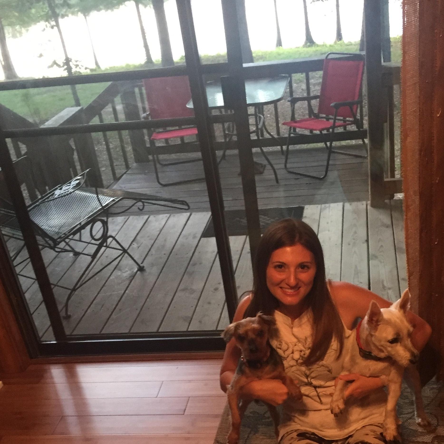 Anna's dog boarding
