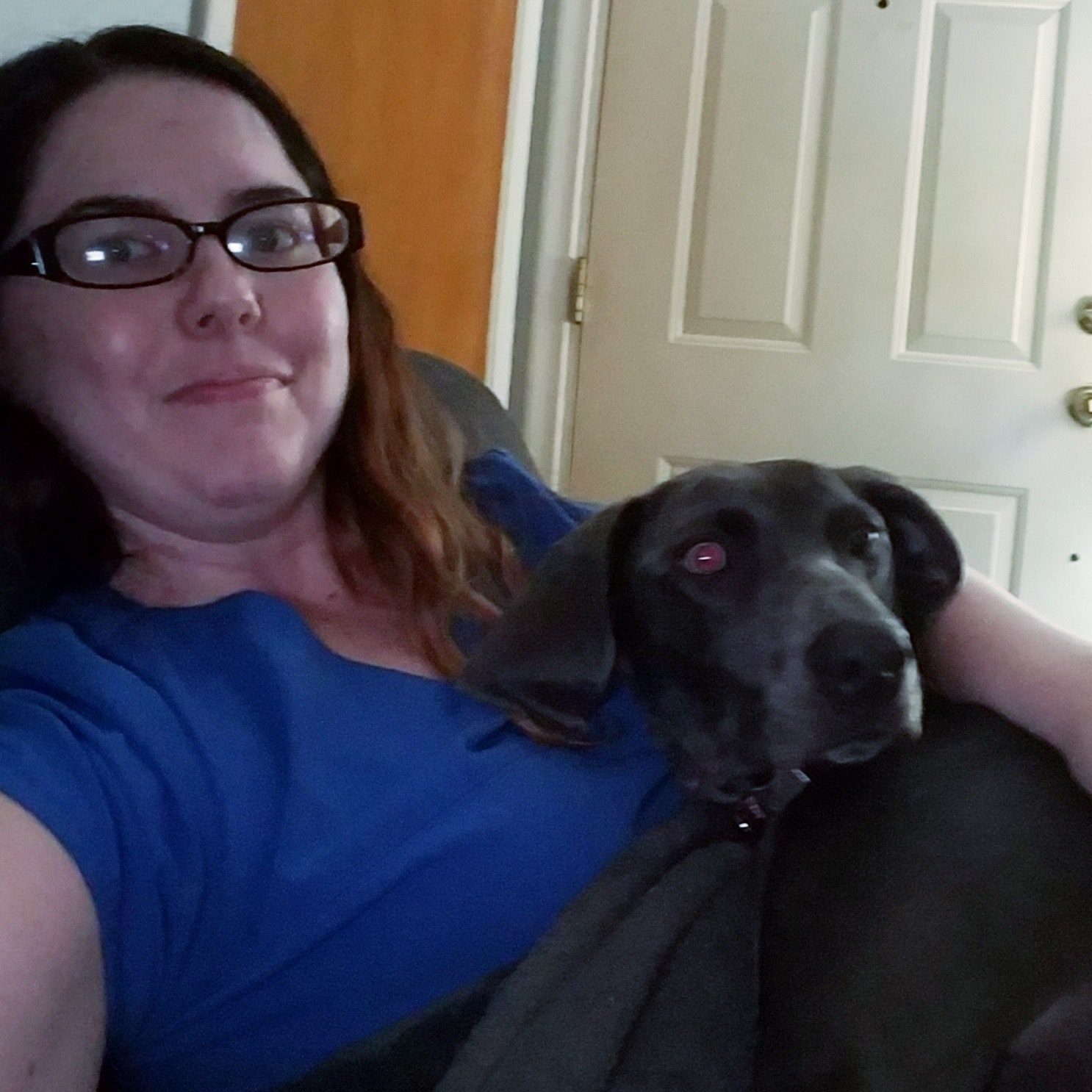 Kelli & Stephen's dog day care