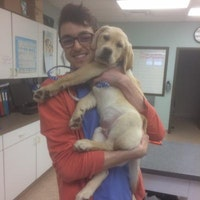 dog walker Bryce