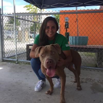 Valentina's dog day care