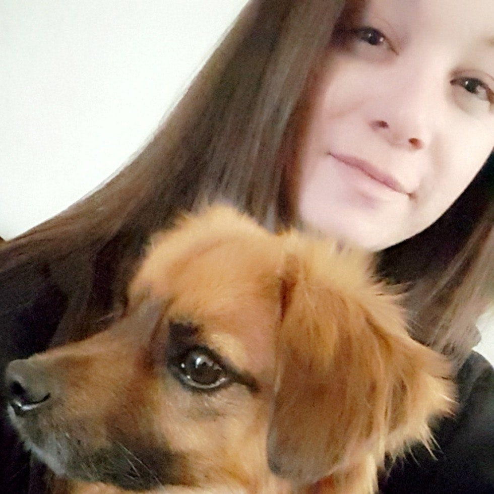 Arianna's dog day care