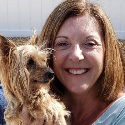 Jody's dog day care