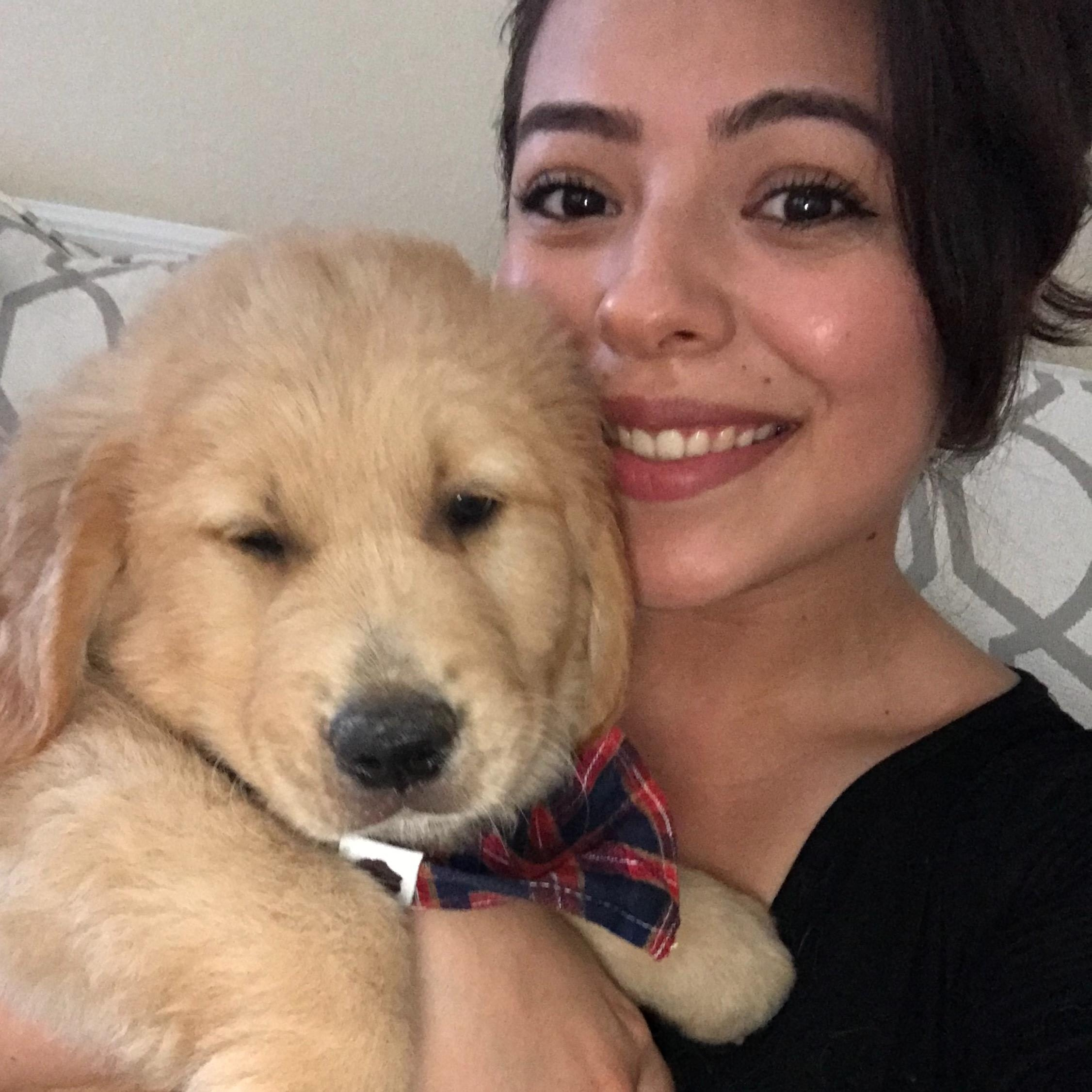 Jacqueline's dog day care