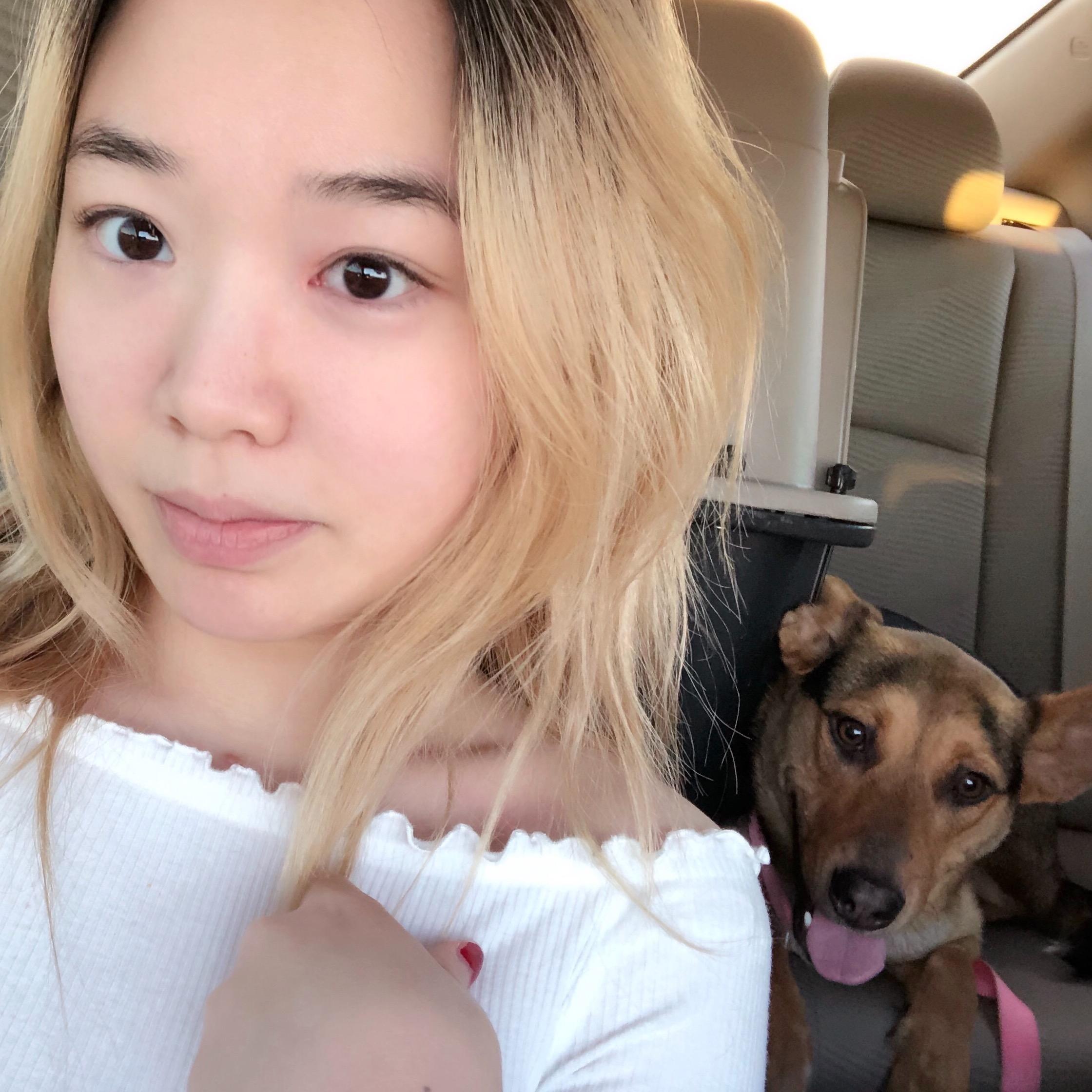 """Jiyoun """"Aria""""'s dog day care"""