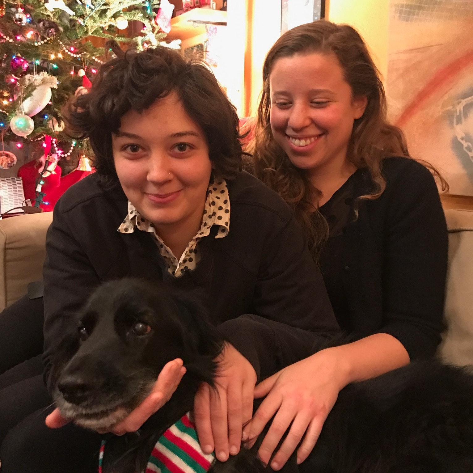Ivana's dog day care