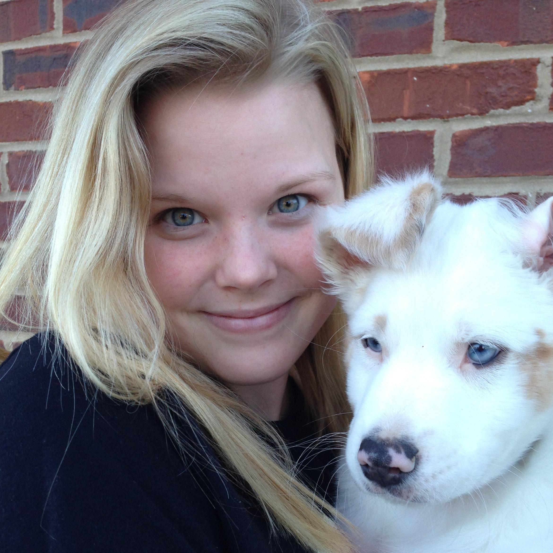 Madison's dog boarding