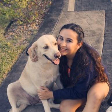 Samayia's dog day care