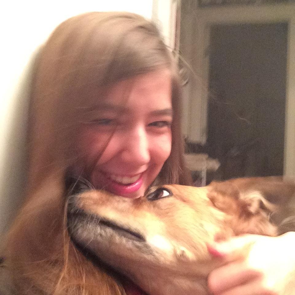 Kacey's dog day care