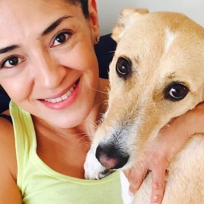 Slovanka's dog day care