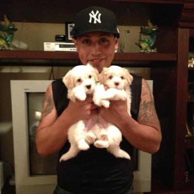 Erick's dog day care