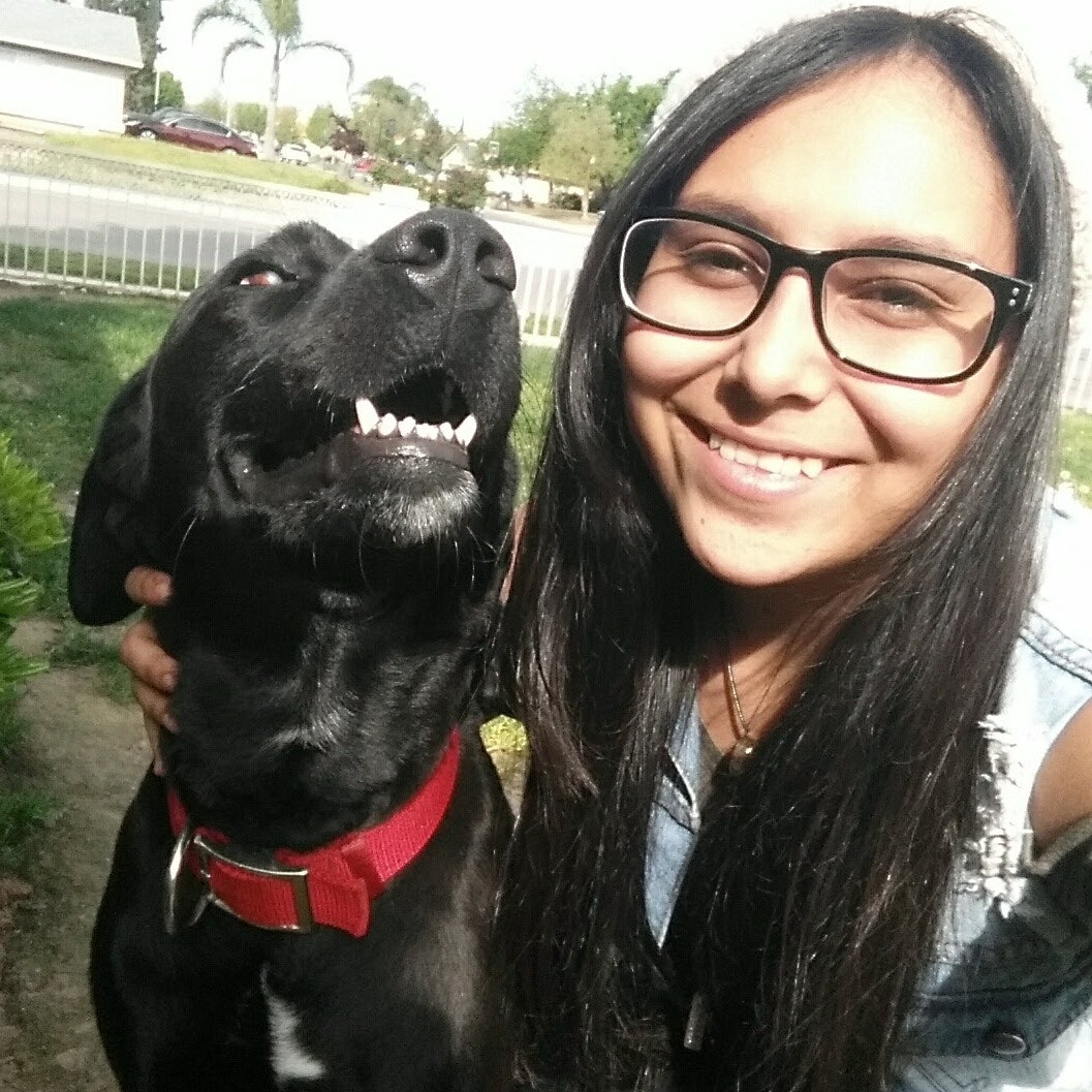 Aliyah's dog boarding
