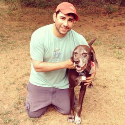 Steve's dog day care