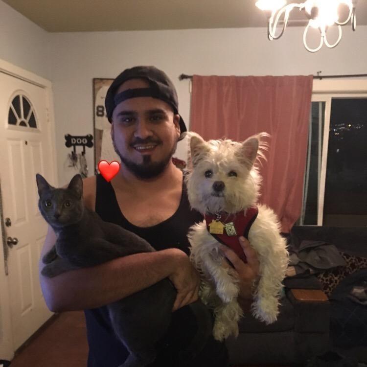 dog walker Ernest