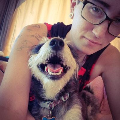 Tarah's dog day care