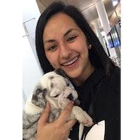 Viridiana's dog day care