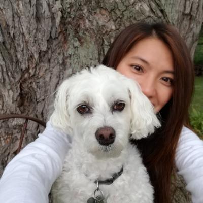 Lian's dog day care