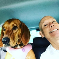Gordon's dog day care