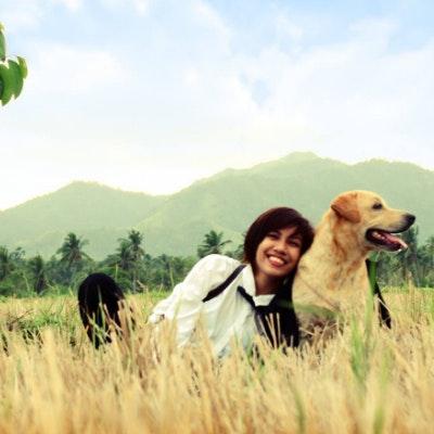 Jeelin's dog day care