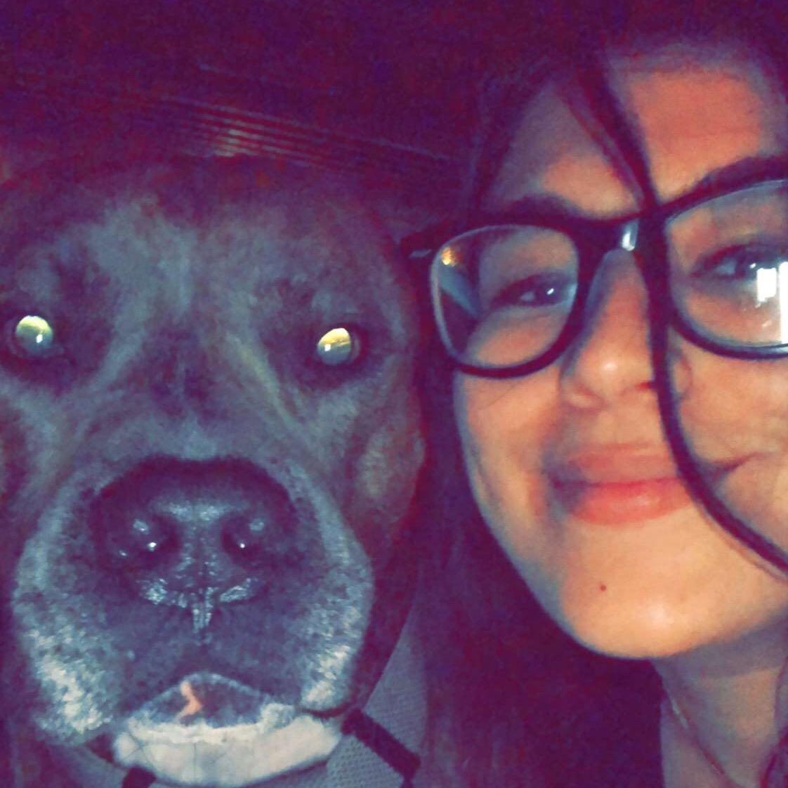 Johanny's dog day care
