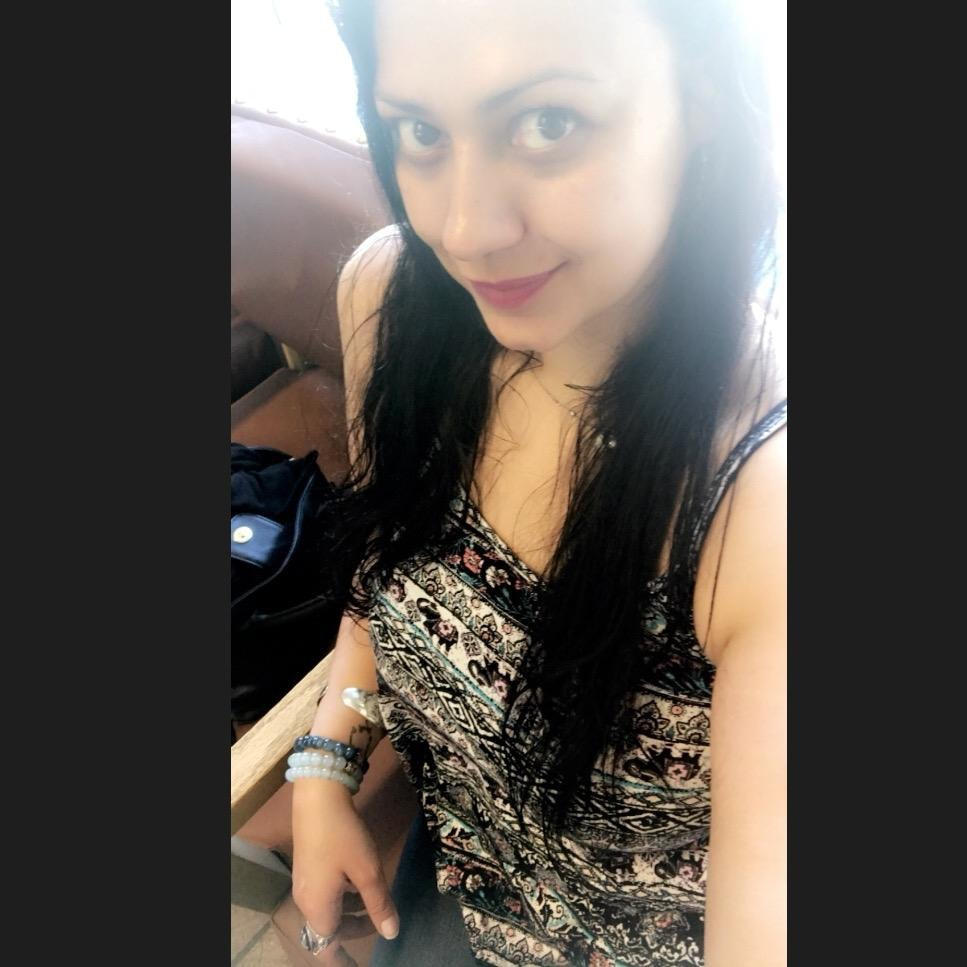 Amy's dog boarding