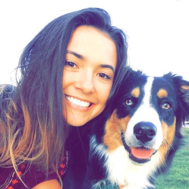 Hayden's dog day care