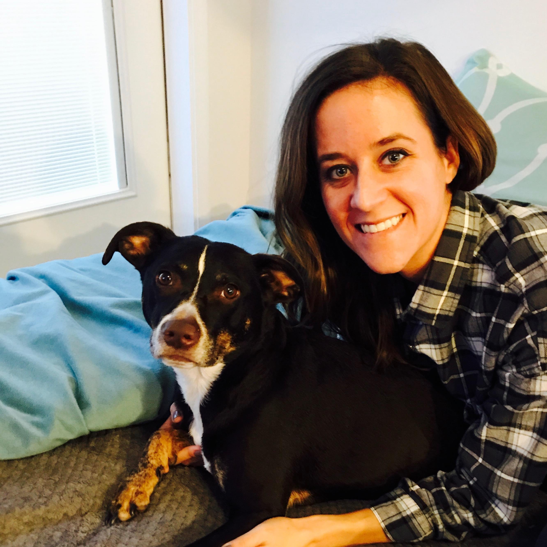 Darcie's dog day care