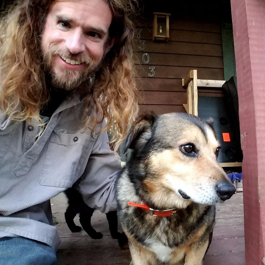 dog walker Auburn