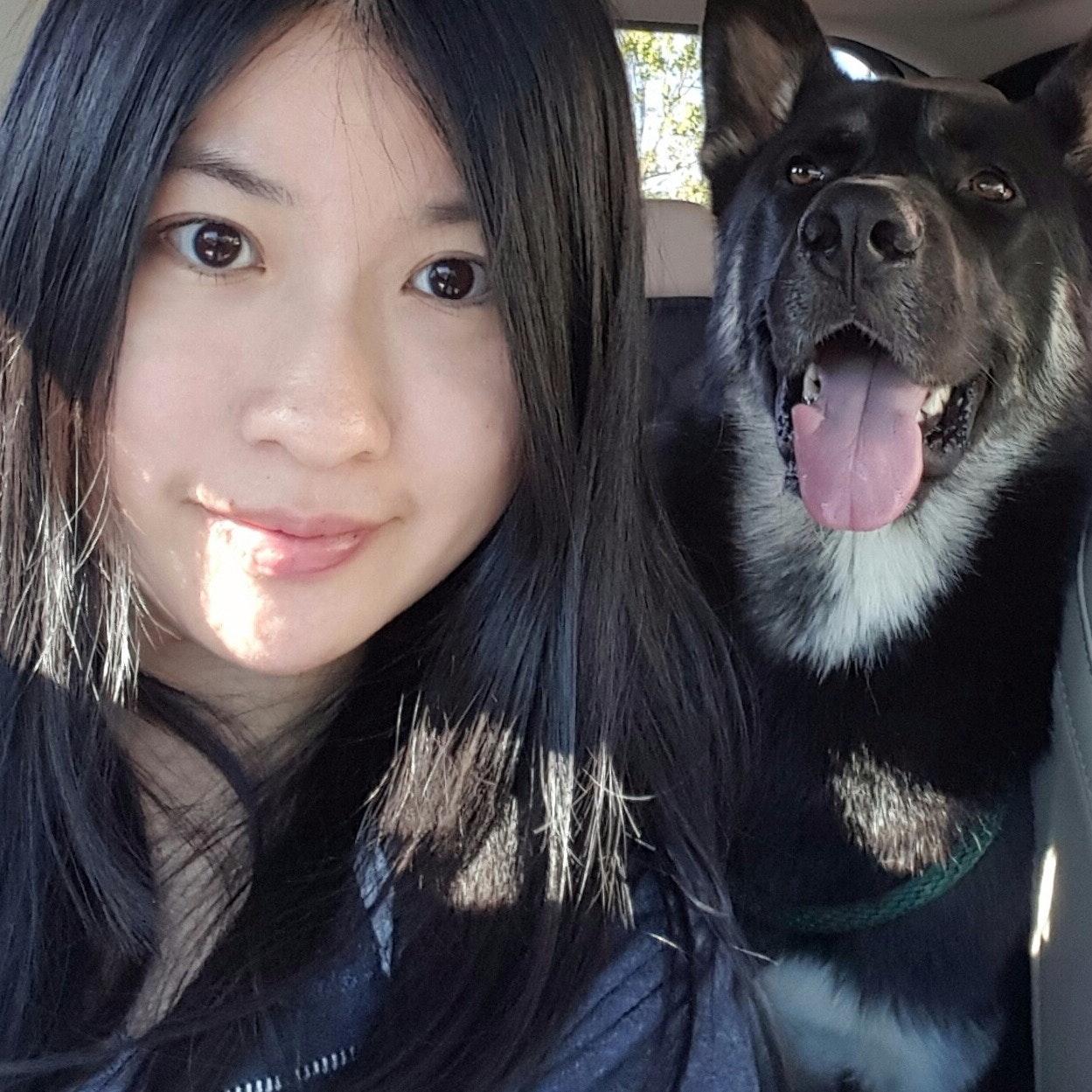 Kai's dog boarding