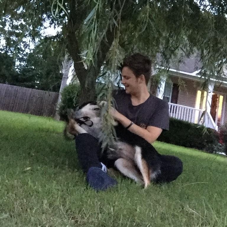 dog walker Dillon