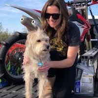 Brea's dog boarding