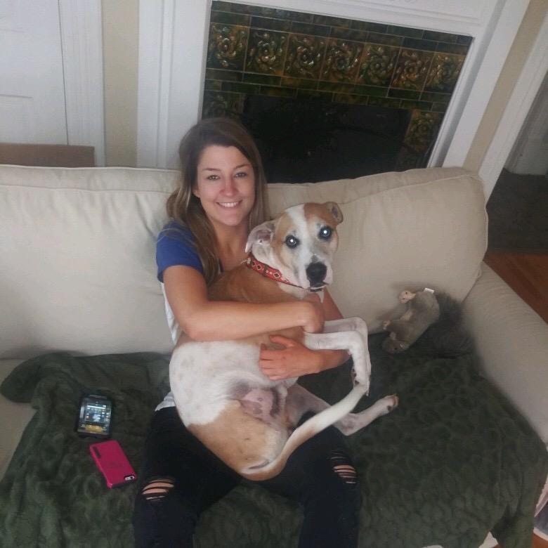 Lindsey's dog boarding