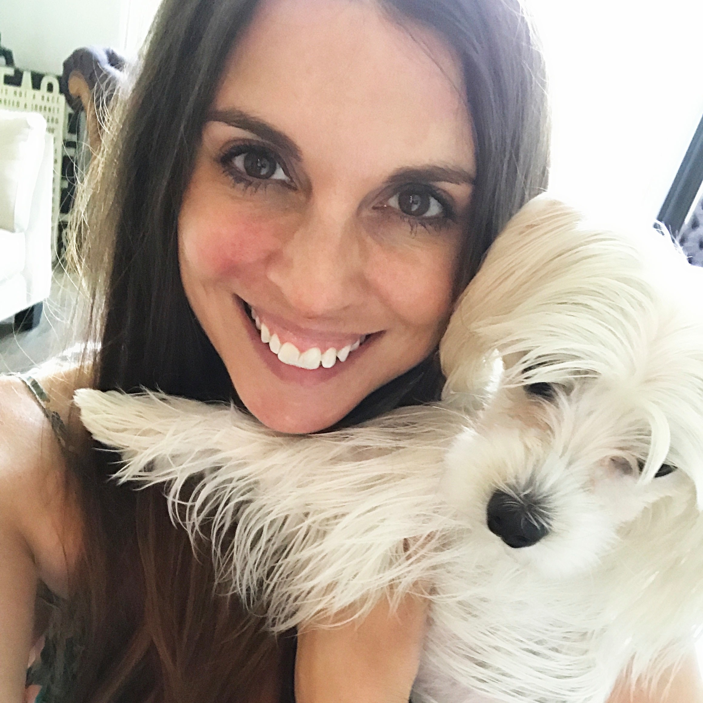 Stacie's dog day care