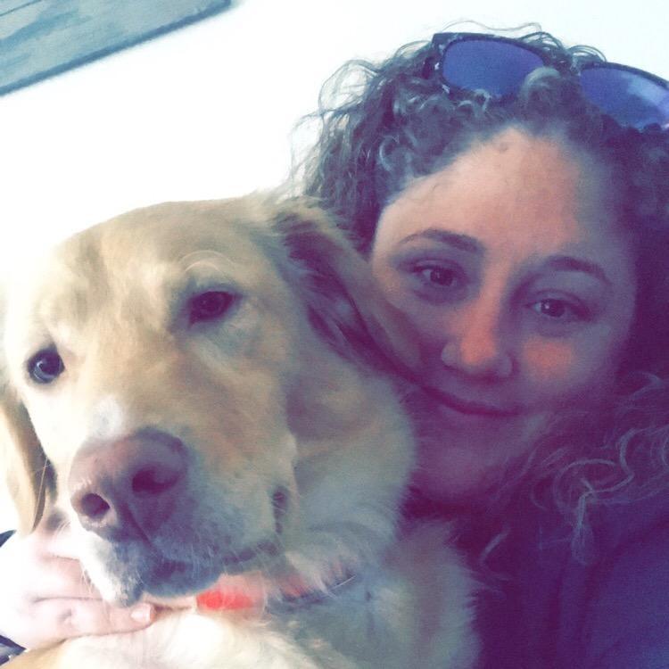 Ashleigh's dog boarding