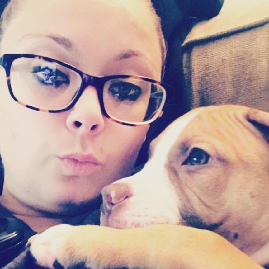 Linzi's dog day care