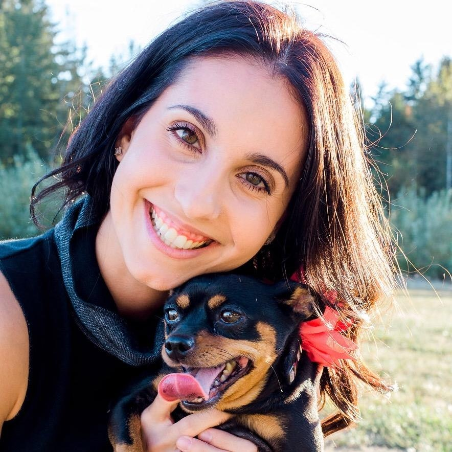 Iva's dog day care