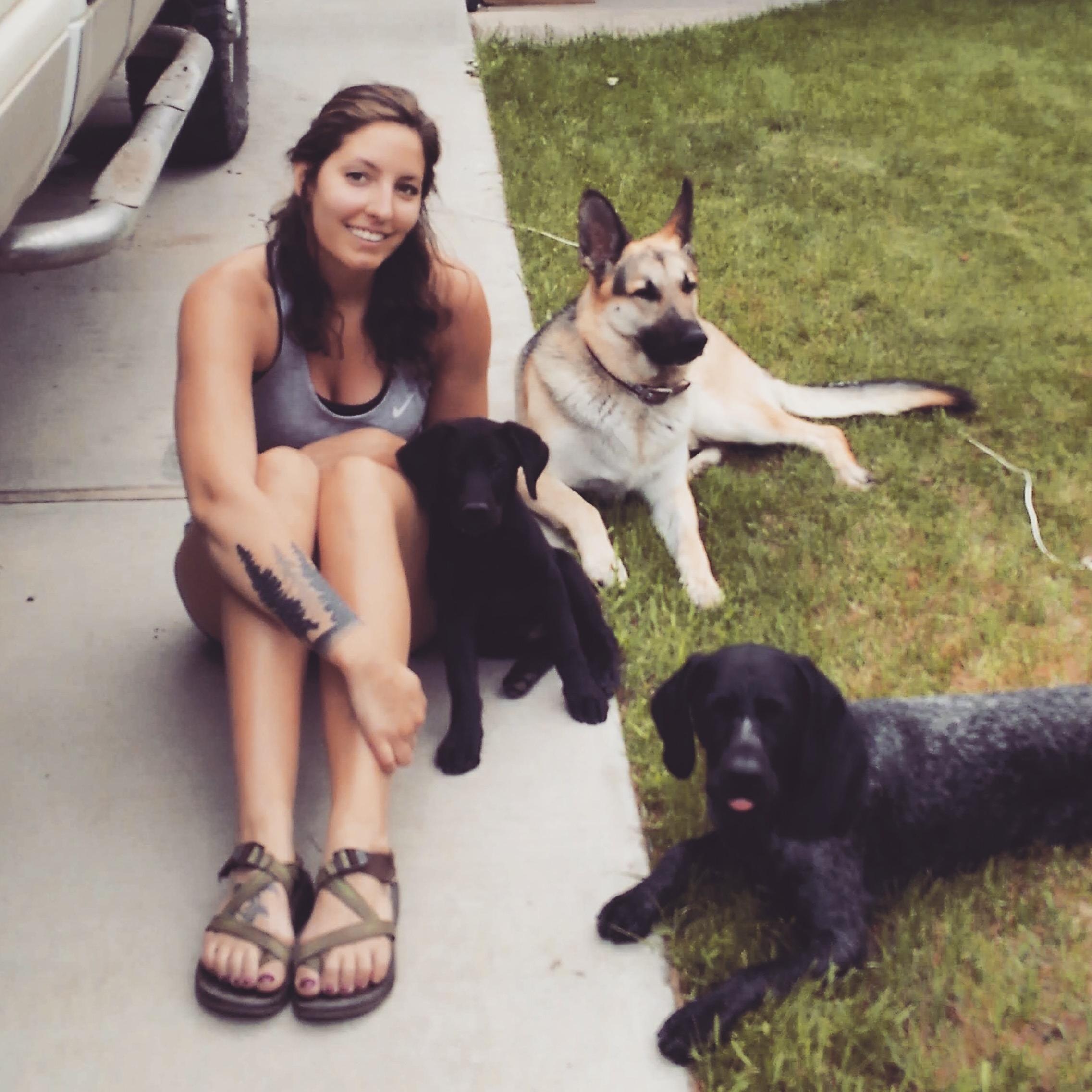 Acacia's dog day care