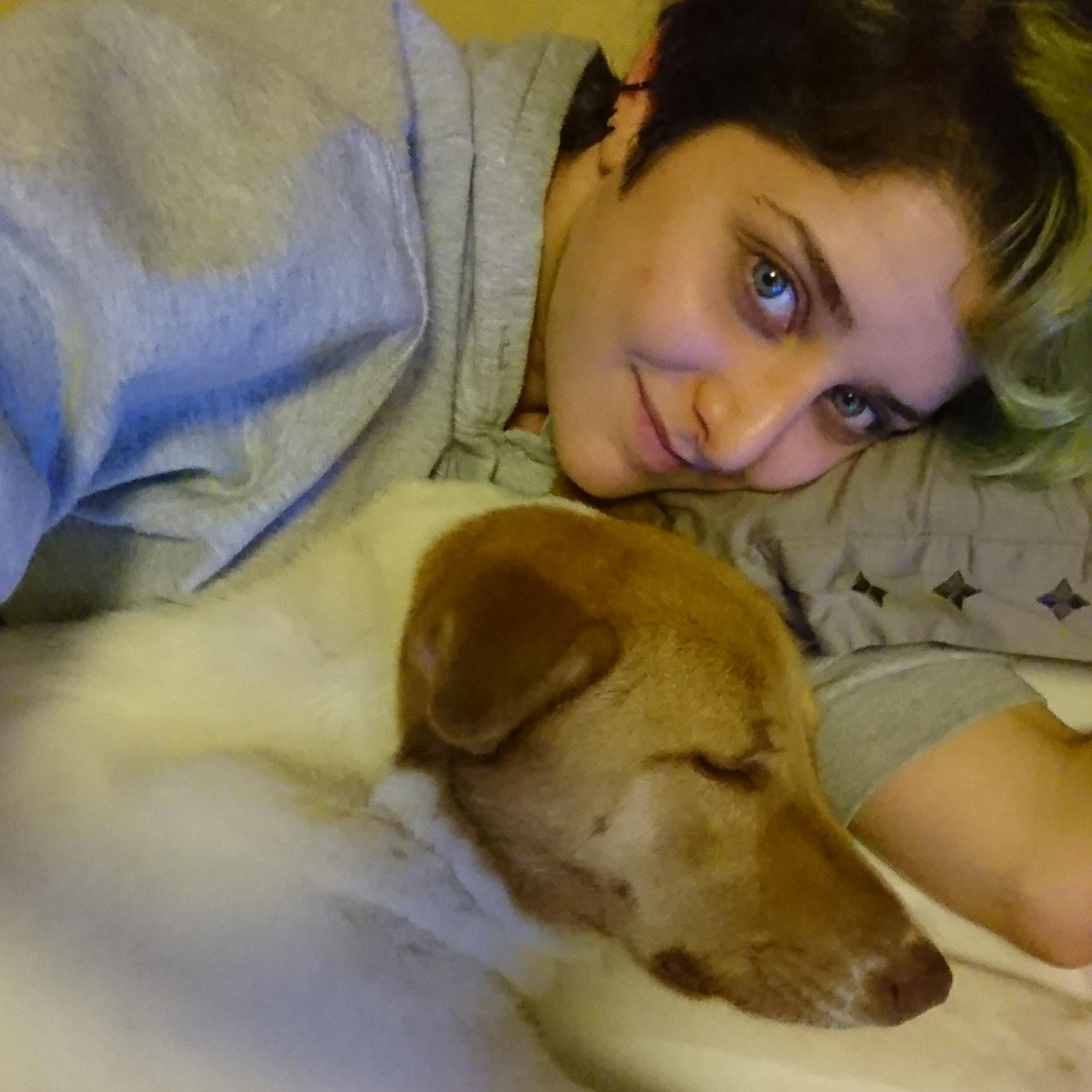 Reem's dog day care