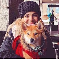 Krista's dog boarding