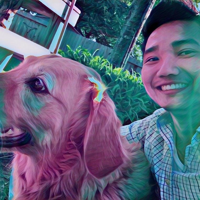 Kyaw's dog day care