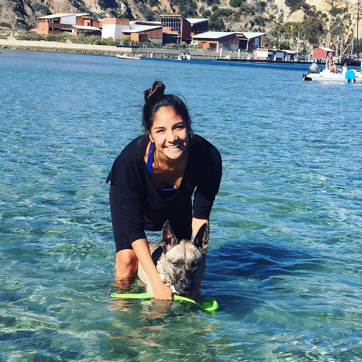 dog walker Arlette