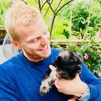 Dan's dog day care