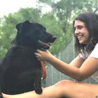 Eva's dog boarding